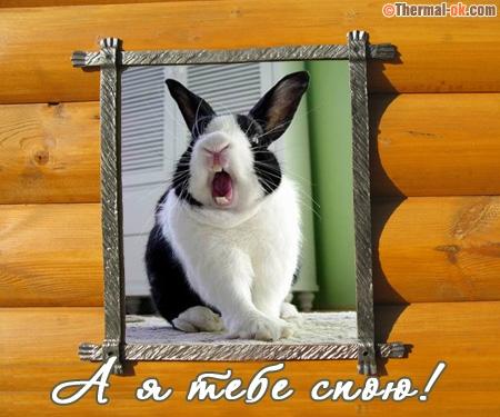 А я тебе спою